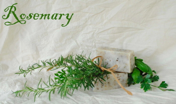Rosemary Goat Milk Soap